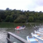 Swanbourne Lake, Arundel